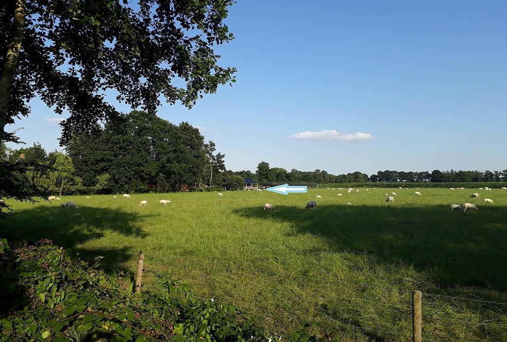 blokhut-bedandbreakfast-platteland-lucaswolde-groningen